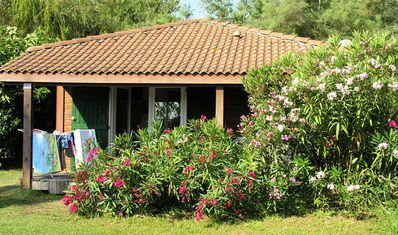 Photo for Camping Marina d'Erba Rossa **** - Chalet Cyrnea air conditioned 3 rooms 4 persons