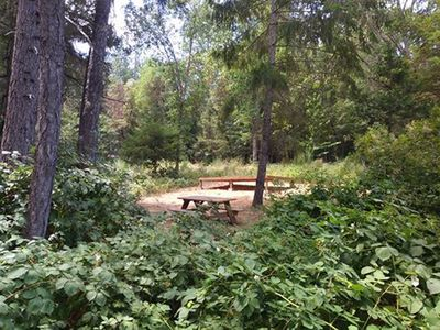 Photo for Campsite- Blackberry Grove at Green's Acres