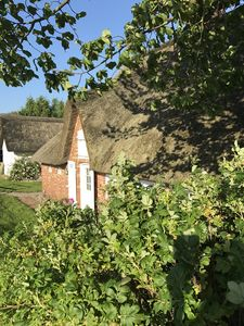 Photo for Historic thatched cottage right on the dike (Wi-Fi + towels, bed linen included)