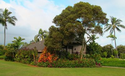 Photo for Updated Vintage Hawaiiana-2 Level Secluded Cottage! Walk to Beach!