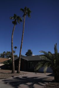 Photo for Wonderfully relaxing retreat in the heart of Ahwatukee close to restaurants!
