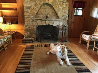 Limestone fireplace, with our dog, Bailey. (friendly dog welcome, 55#/-, $35)