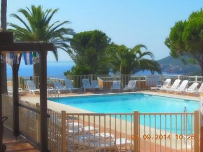 Photo for Apt F2 Magnificent enclosed landscaped area with sea and Estérel view, large swimming pool, ping po