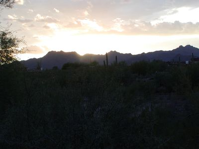 Mtn/City Views, Quiet Privacy on 1 Acre of Giant Saguaros! Wheelchair friendly.