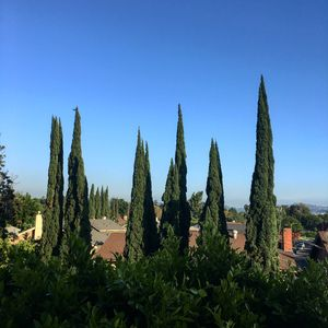Photo for Charming Southern Ca Retreat Close To Everything, Near Los Angeles - Free Wi-fi