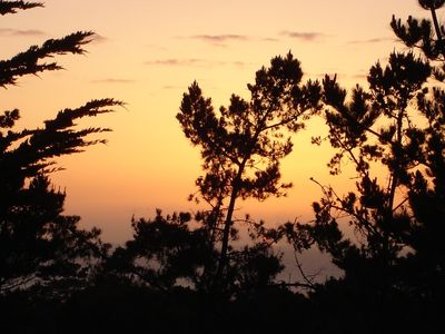 Photo for Peaceful Vacation Sanctuary - Ocean & Forest Views in Pebble Beach