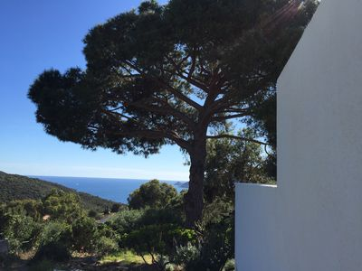 Photo for On the Ile du Levant, private pool and garden, enchanting natural setting