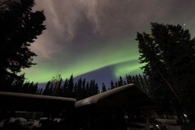 The Northern Lights bless us with inspiring views even in our wooded hideaway.