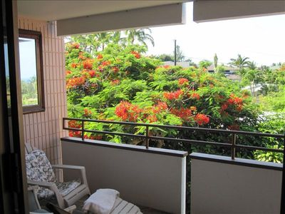 Sit on the lanai, listen to the birds in the trees.