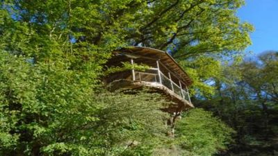 Photo for A large, ecological and accessible tree house