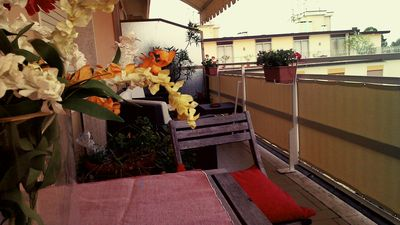Photo for 2BR Apartment Vacation Rental in Viareggio, Toscana
