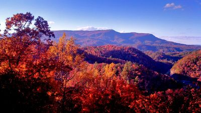 Photo for 50 Mile Mountain Views! 5 Miles to Pigeon Forge! Secluded!
