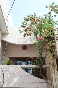 Photo for Kuteer A Peaceful Homestay in Chandigarh