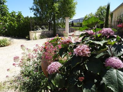 Photo for Self-catering stylish apartment in a Provencal Mas, 109 yards from the Luberon