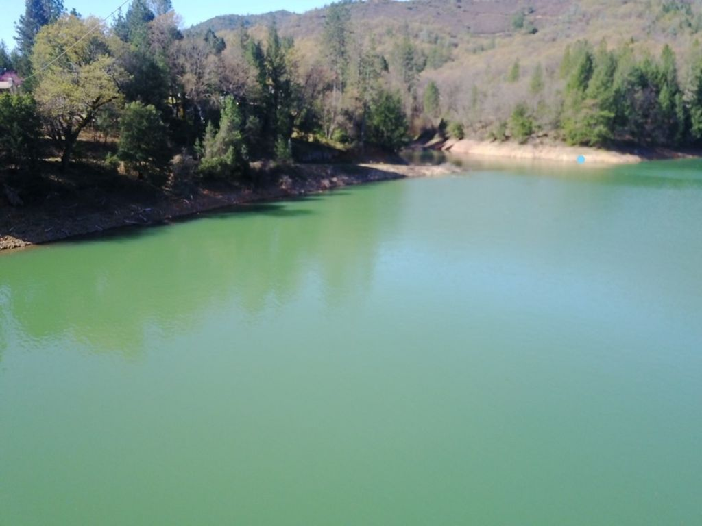 shasta lake singles Find shasta lake homes for sale with the real estate book view property listings and connect with real estate agents in shasta lake, ca.