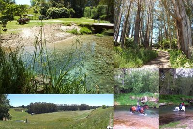 Picnic spots and streamside bbq area available
