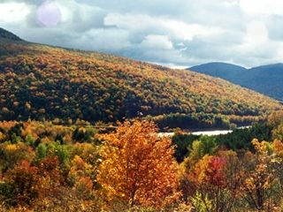 Andes Cabin Retreat-Spectacular View Adjoining ~NYC~ Reservoir, short/ long term