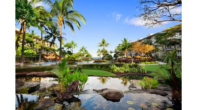 Photo for Luxurious  OCEANFRONT resort on pristine beach with beautiful pool and amenities