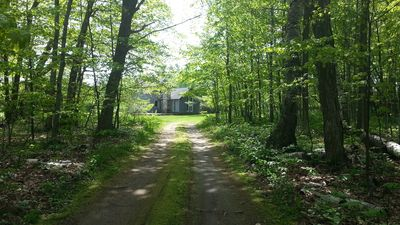 private driveway through beautiful wooded area