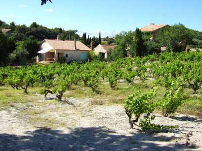Photo for The Mas and the Villa des Bergines Two houses in the heart of the vineyards
