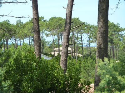 Photo for Pretty Villa Cap Ferret view overlooking forest 5 minutes walk from the Basin