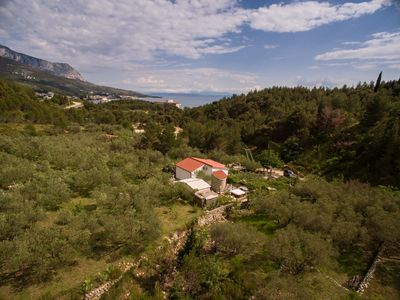 Photo for ctma220- Holiday home with whirlpool in Tučepi - Makarska, 4 + 1 persons, surrounded by olive and pine trees, wi-fi, AC