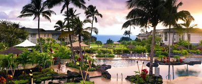 Relax in the beautiful pool, 1 of 3  and hot tubs in beautiful Kauai!
