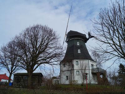 Photo for The old windmill in the center of the Baltic Sea resort of Graal-Müritz