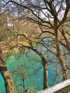 view the beautiful Comal from your patio