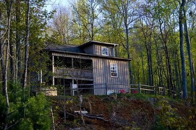 Poplar Cove, our cabin in the woods.