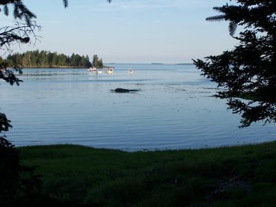 Photo for 1BR Cottage Vacation Rental in Gouldsboro, Maine