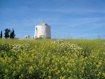Photo for Traditional stone built Windmill