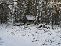 Great bush location & cosy mountain cottage but deceptively convenient to Cradle Mountain.