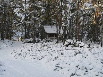 Photo for Cradle Mountain Love Shack