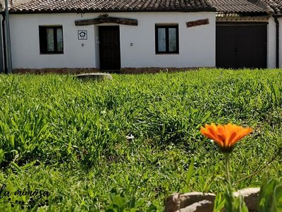 Photo for Self catering La Mimosa for 6 people
