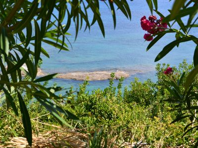 Photo for Cute 2 bedroom apartments in beautiful fruit garden - touch of real Kefalonia!
