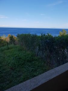 Photo for apartment 35 m2 sea view.