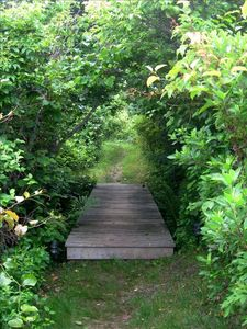 Photo for 2BR Cottage Vacation Rental in Chilmark, Massachusetts