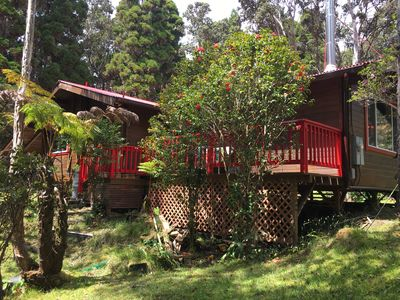 Front view of the Cabin surrounded by red Camellia trees.
