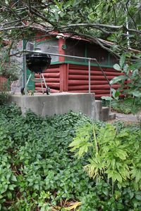 Photo for 1930's Rustic Studio Cabin on a Private Estate, Sleeps 2