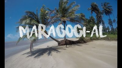 Photo for Paraiso seaside Maragogi