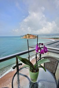 Photo for Plava Villa A1 3bedroom apartment with sea view