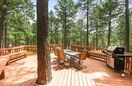 Back deck & gas BBQ. Treks decking-no splinters to worry about with little ones.