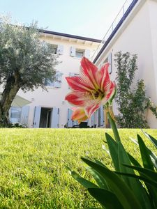 Photo for Charming Country House next Lake Garda