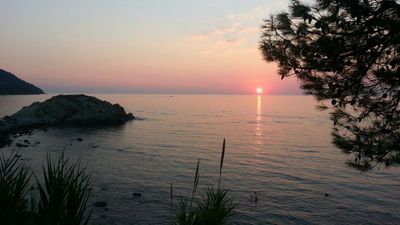 Photo for Cottage by the sea - Agropoli (Trentova)