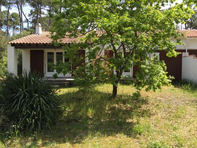 Photo for Charming villa 300 meters from the beach in the middle of a pine forest