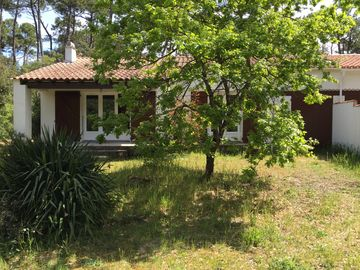 Charming villa 300 meters from the beach in the middle of a pine forest