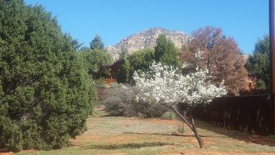Photo for Secluded Retreat On 3/4 Acre In Heart Of Sedona