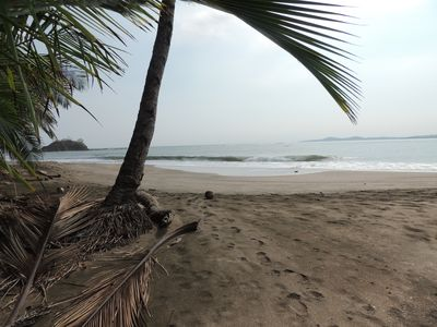 Photo for Oceanfront Sandy Beach, Pristine Jungle Setting