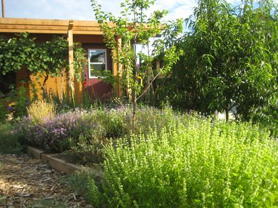 Photo for Cozy & Private Studio Cottage in Garden Sanctuary + Walk to Downtown & OSF